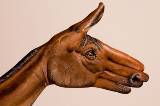 handimals-horse-guido-daniele-566x376